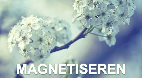 Magnetiseren Praktijk het alternatief Bovenkarspel